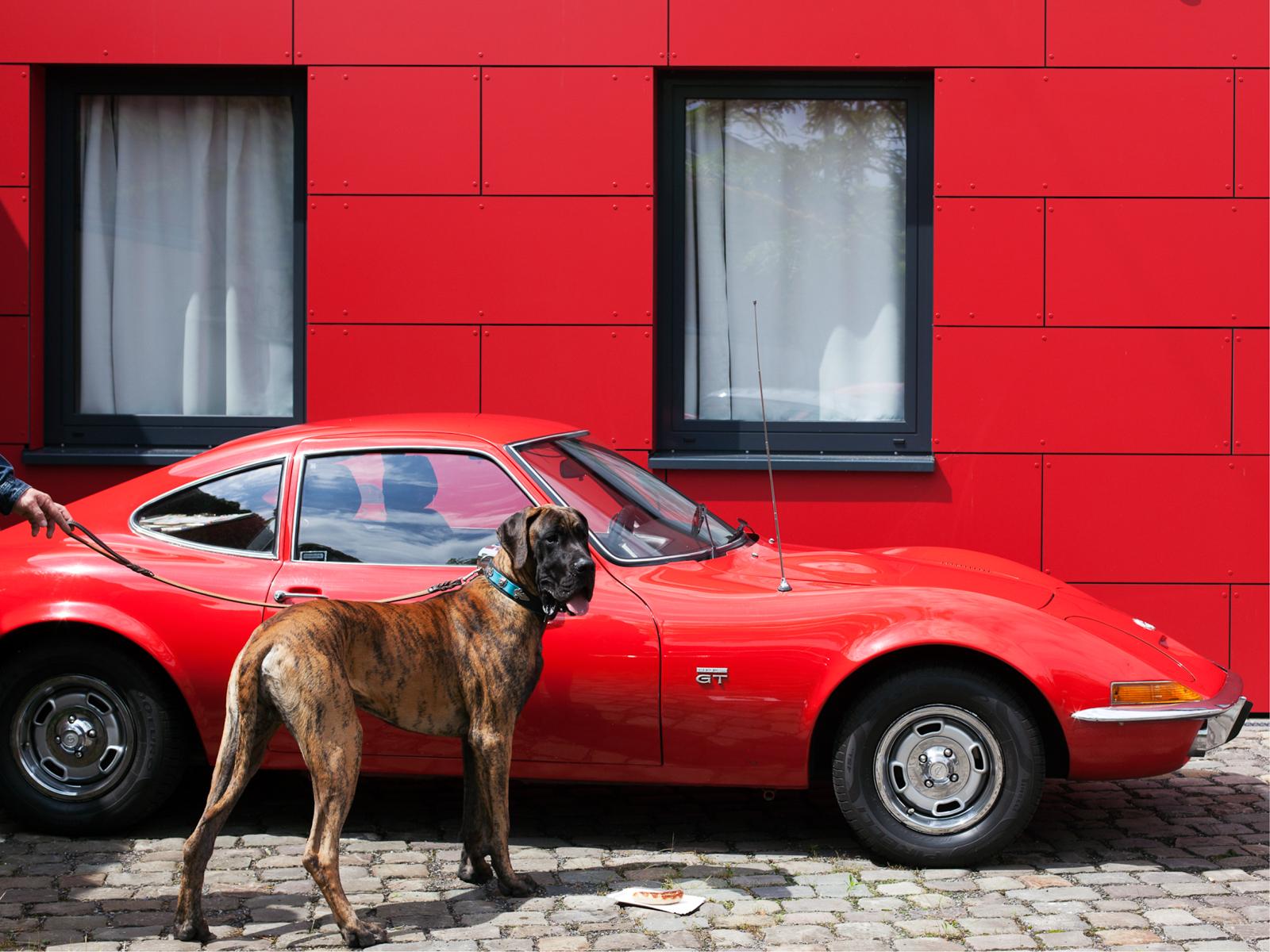 """Kunstpreis Fotografie 2018: Bewerbungsfoto aus der Serie """"Lovely Planet: Deutschland"""" des Förderpreisträgers Jakob Ganslmeier"""